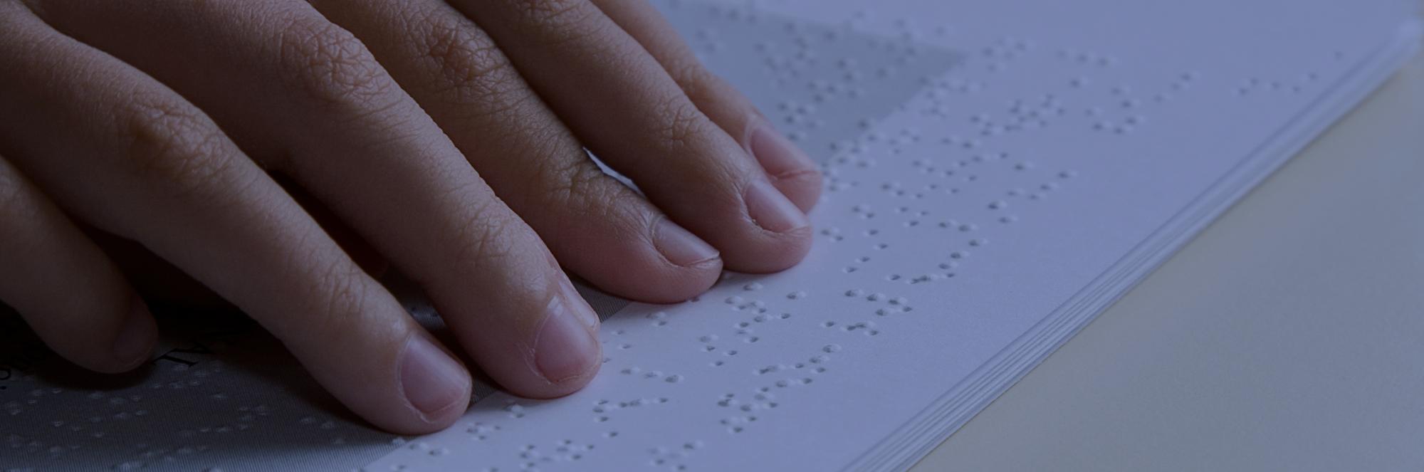 Blista Brailletec [EN]